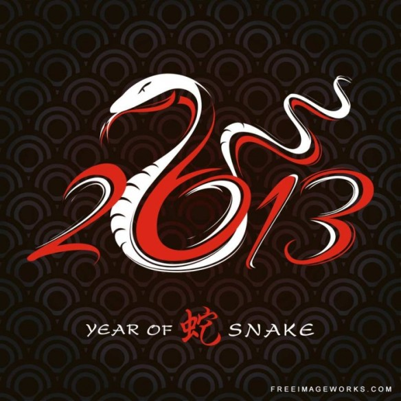 2013_snake_year_of-1-700x700